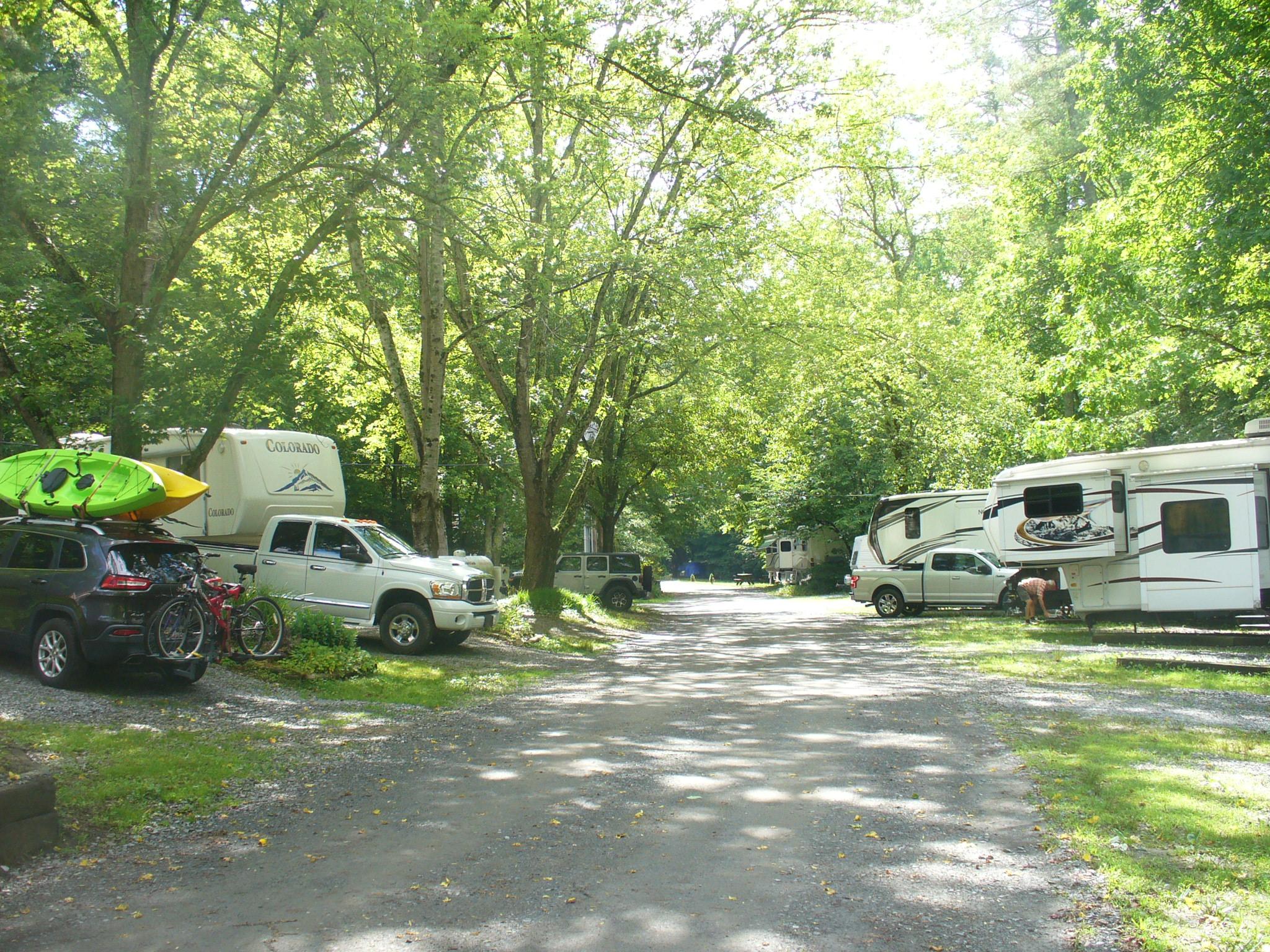 Shaded RV spots along the Hemptown Creek