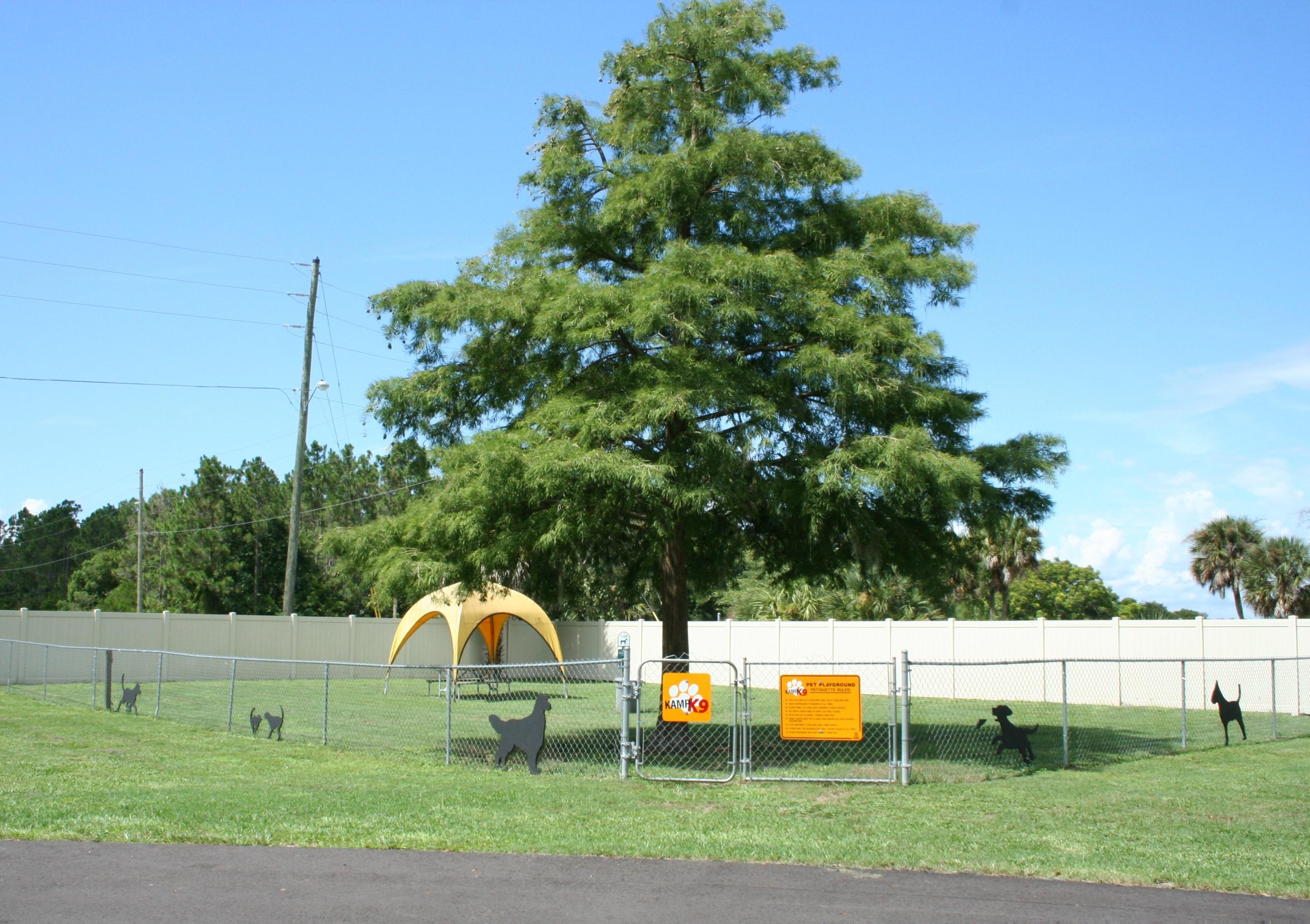Kamp K9 dog park.