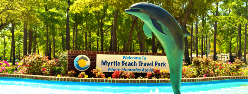 """""""Freedom"""" the dolphin greets every guest as they enter the park"""