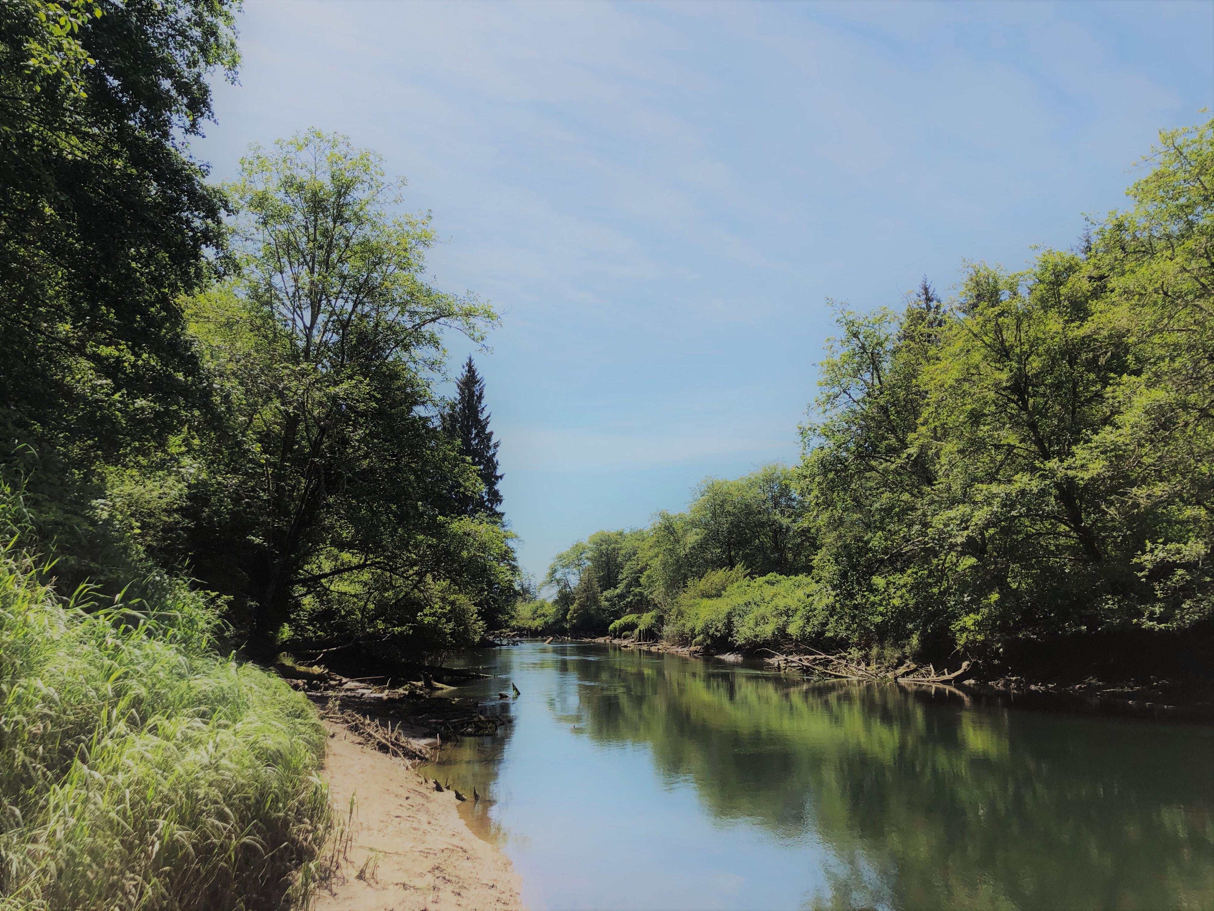 Connor Creek