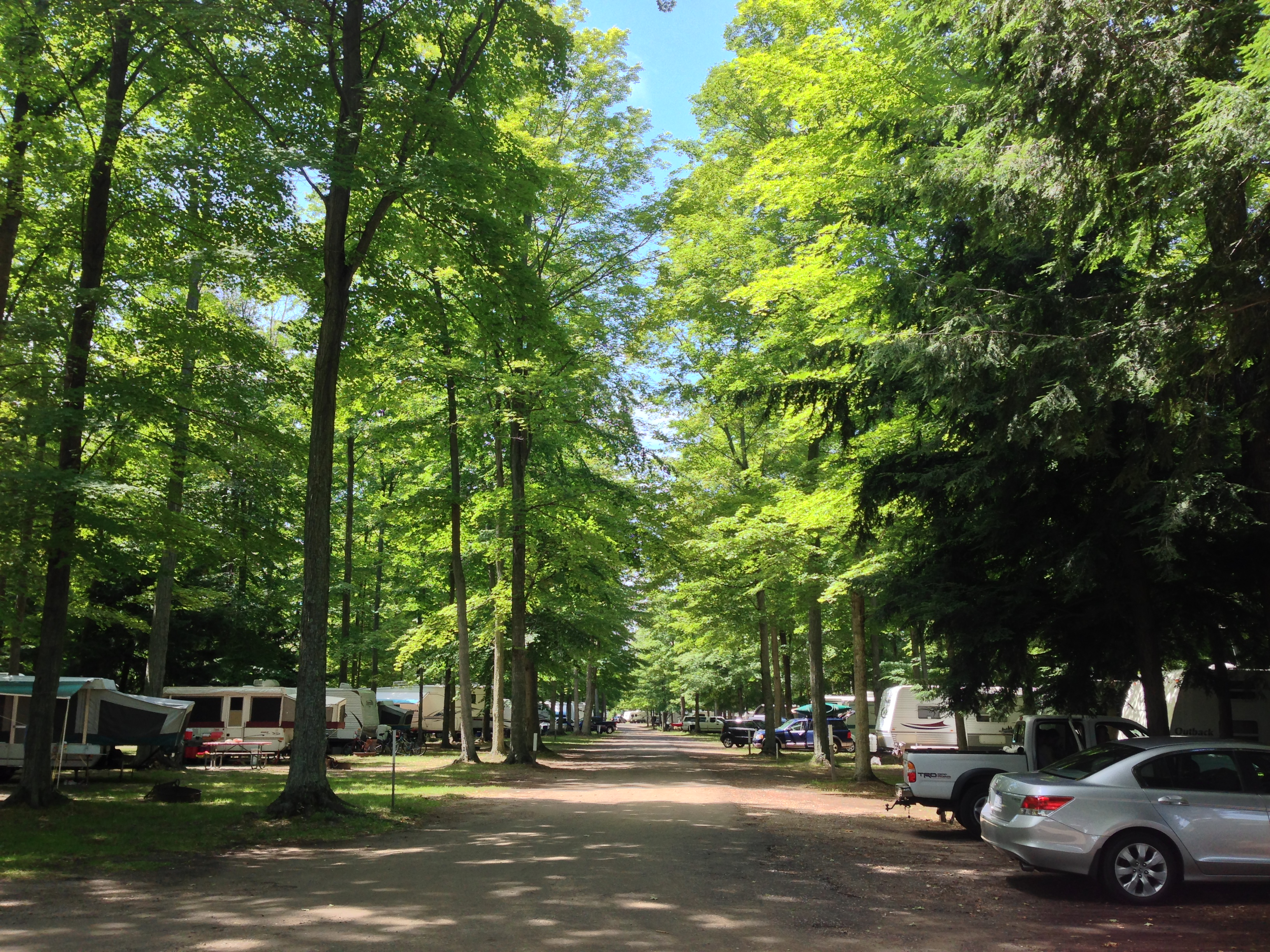 Looking West down Maple Lane in the RV Park