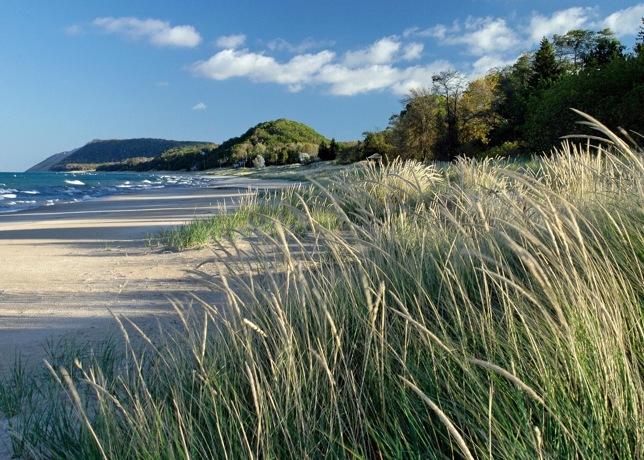 The beach at Empire