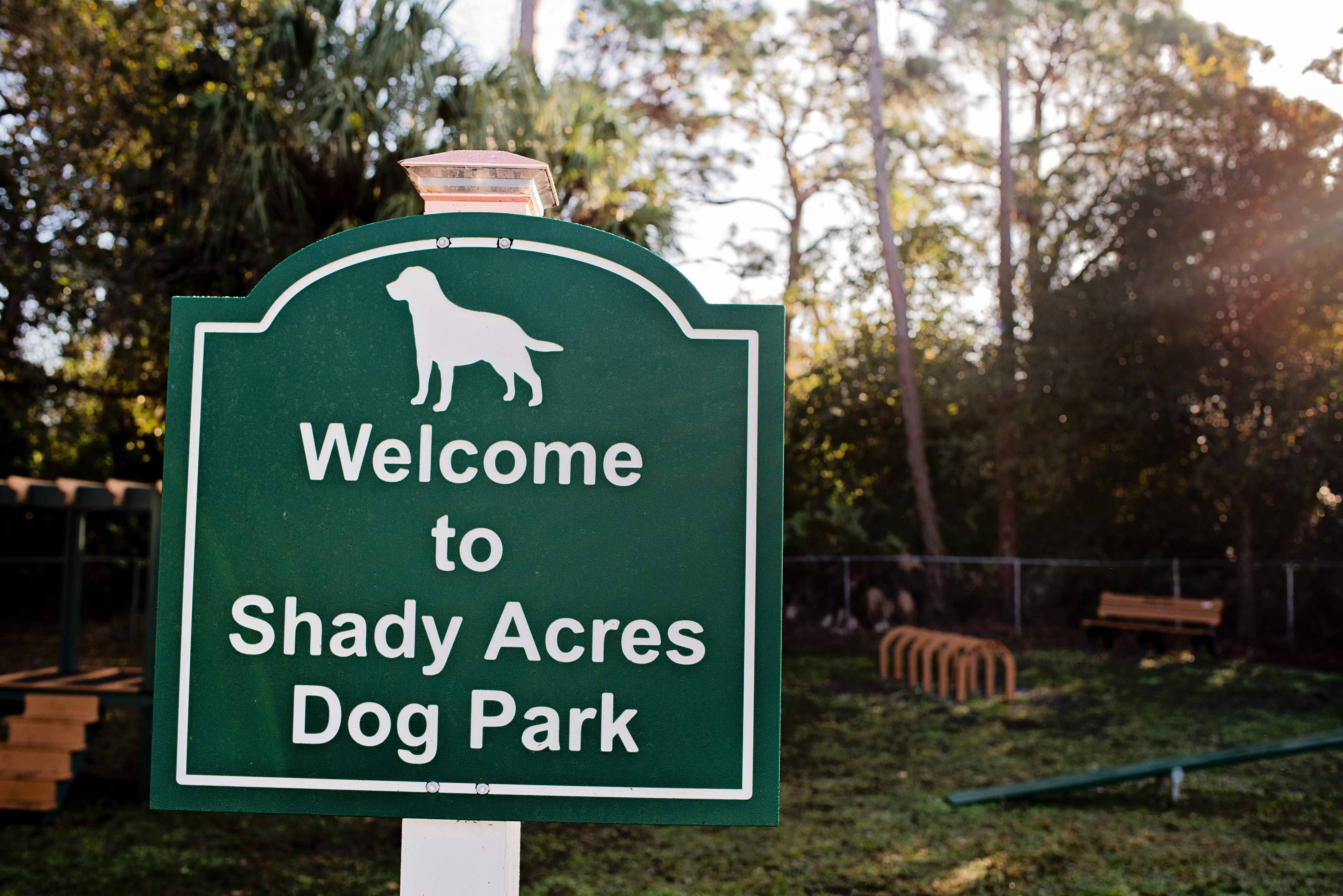 Welcome to Our Dog Park