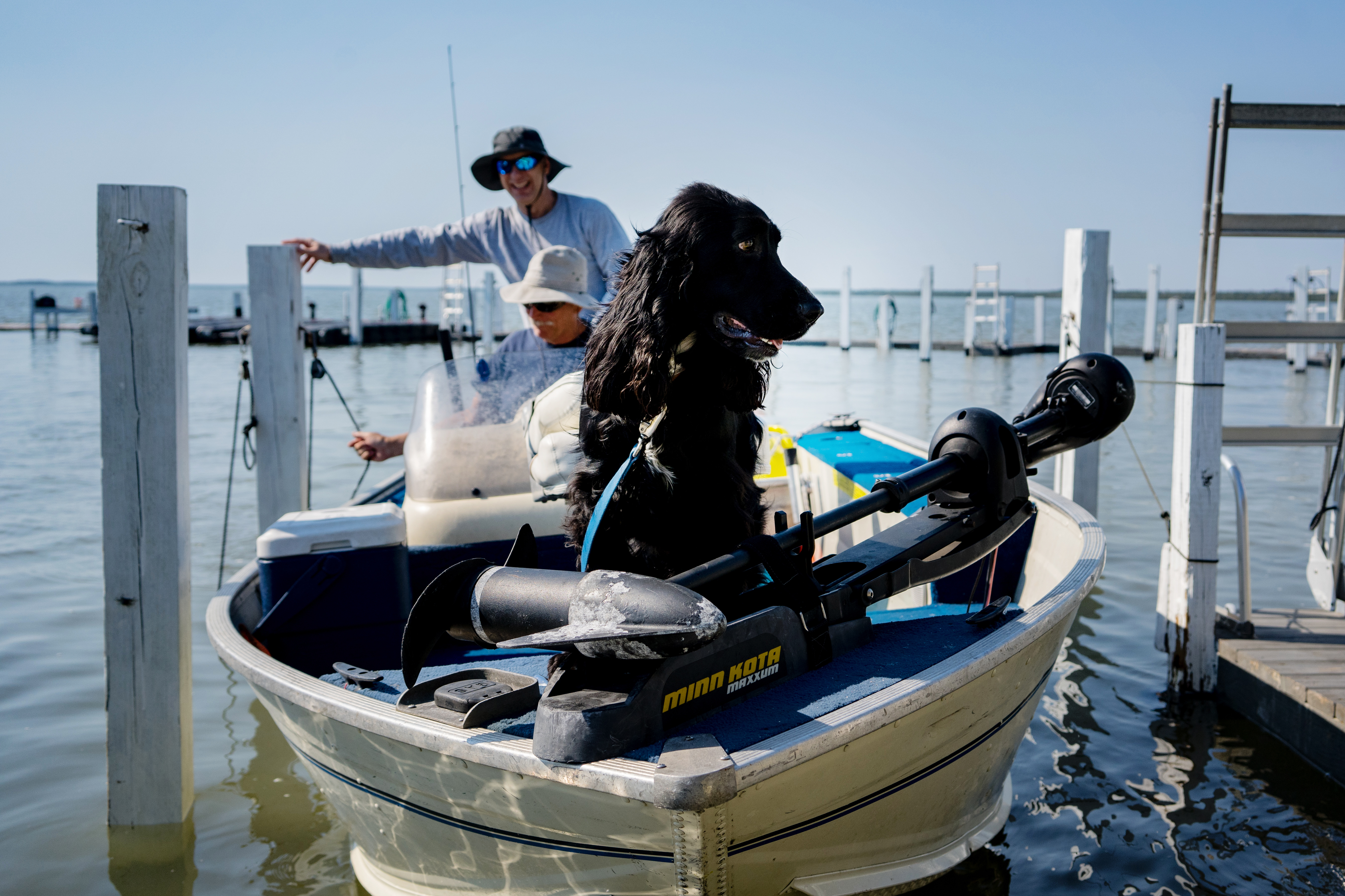 Even the dogs love to fish!