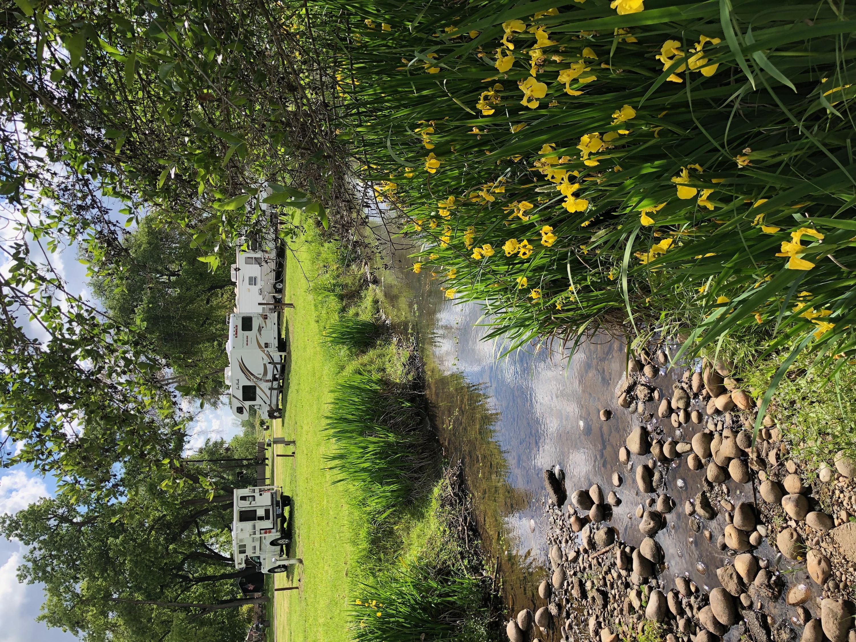Riverbend Rv Park/ springtime