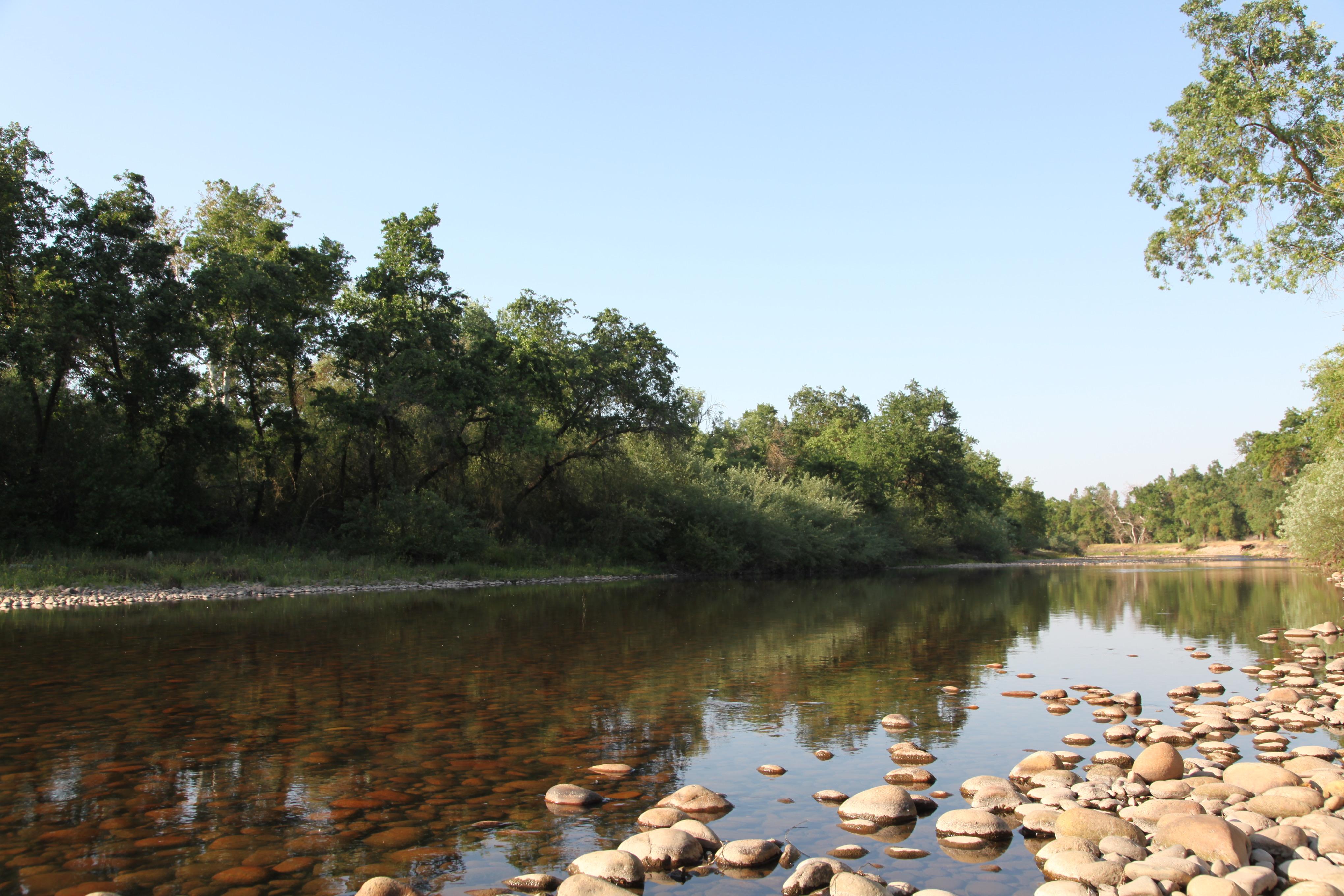 Kings River/ summertime
