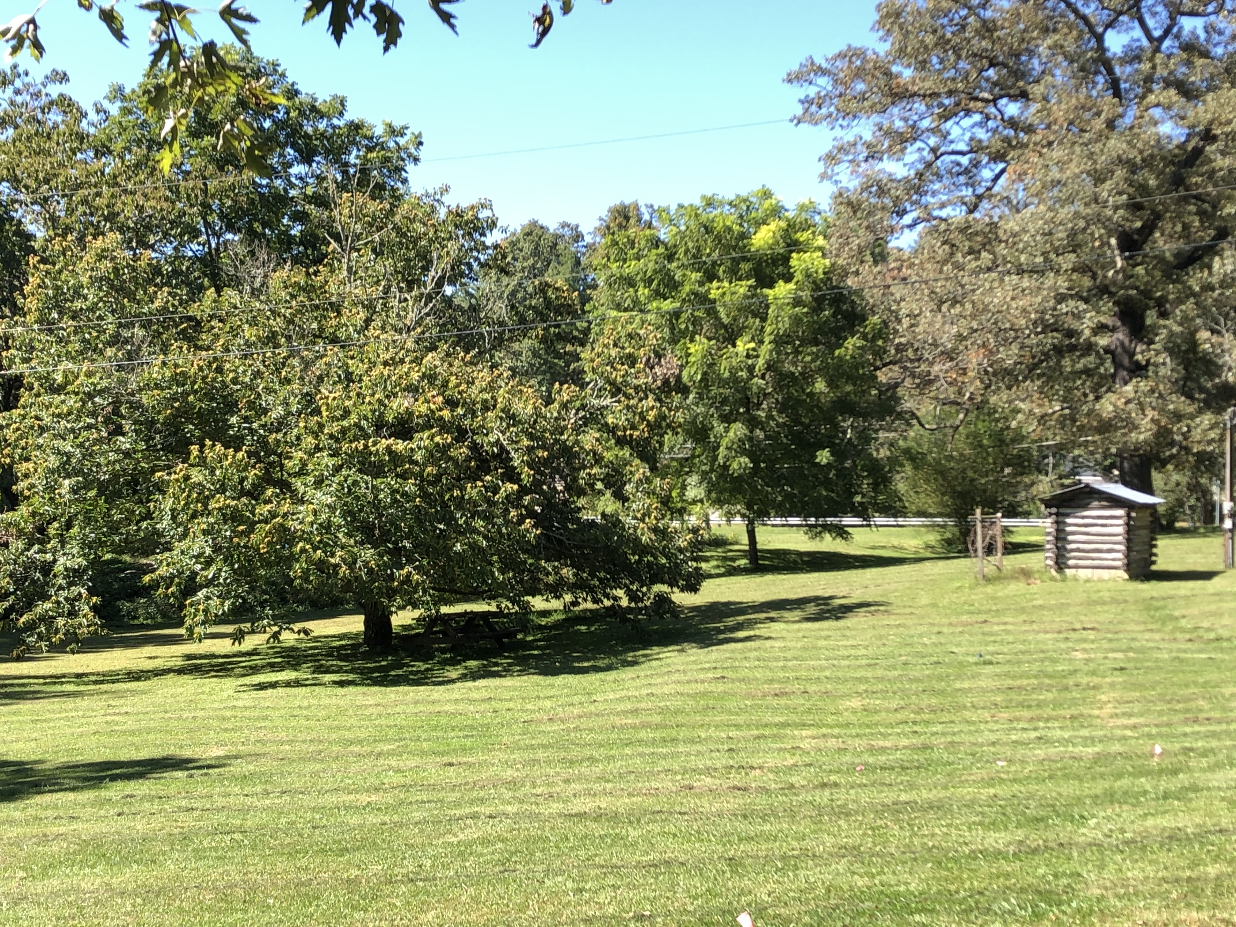 large grassy field for games, dog walking, and play