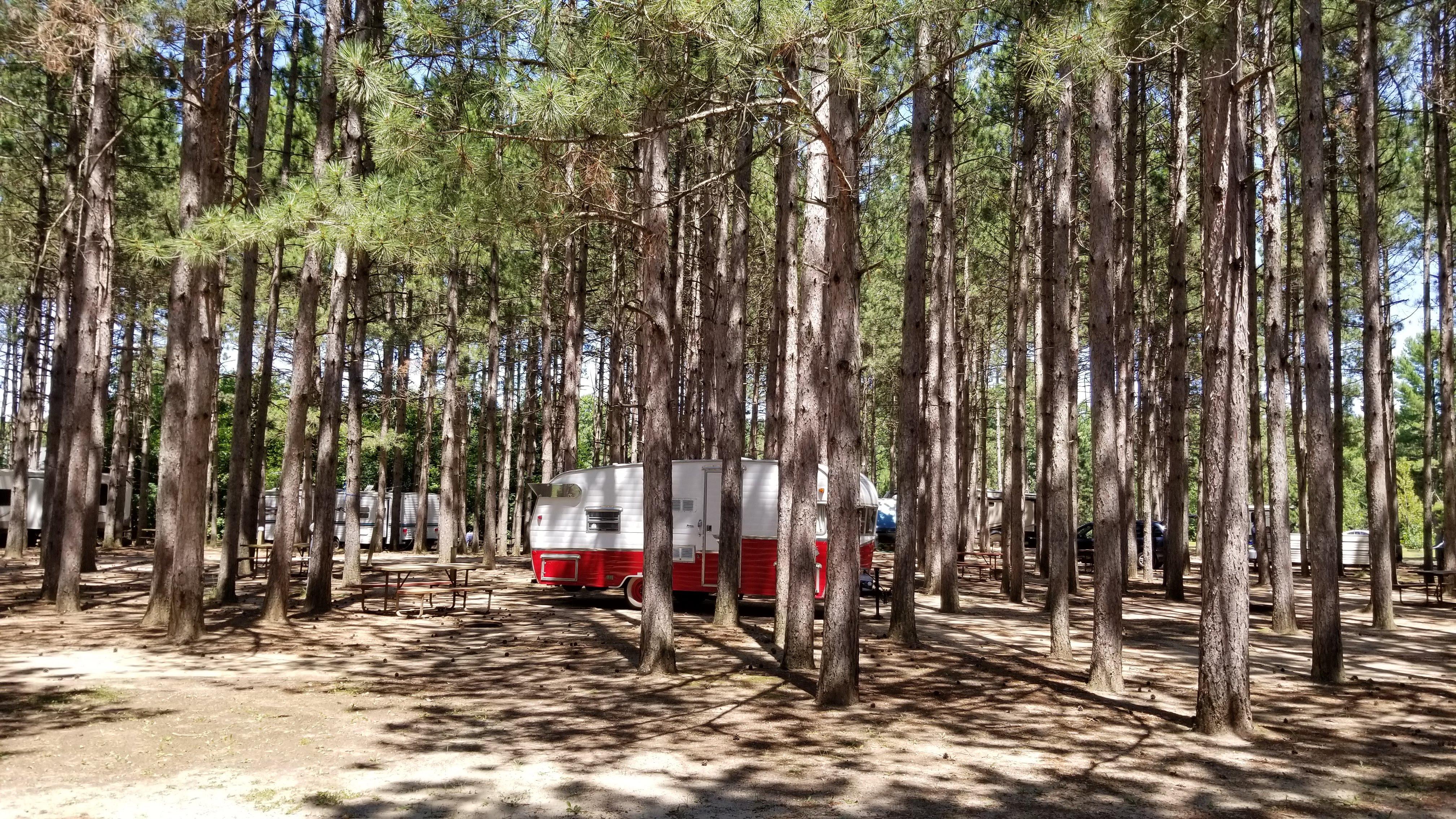 Vintage Camper in Pines