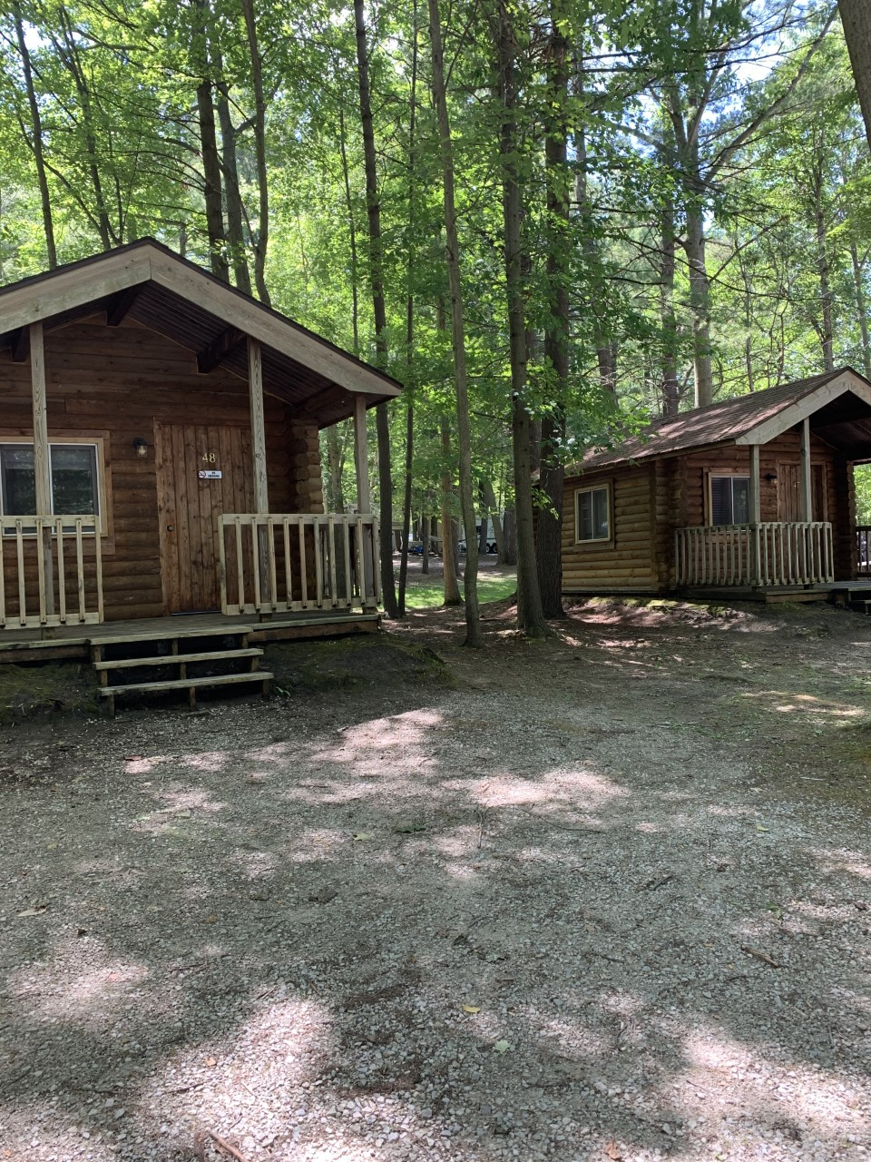 Rustic cabins situated in a wooded area