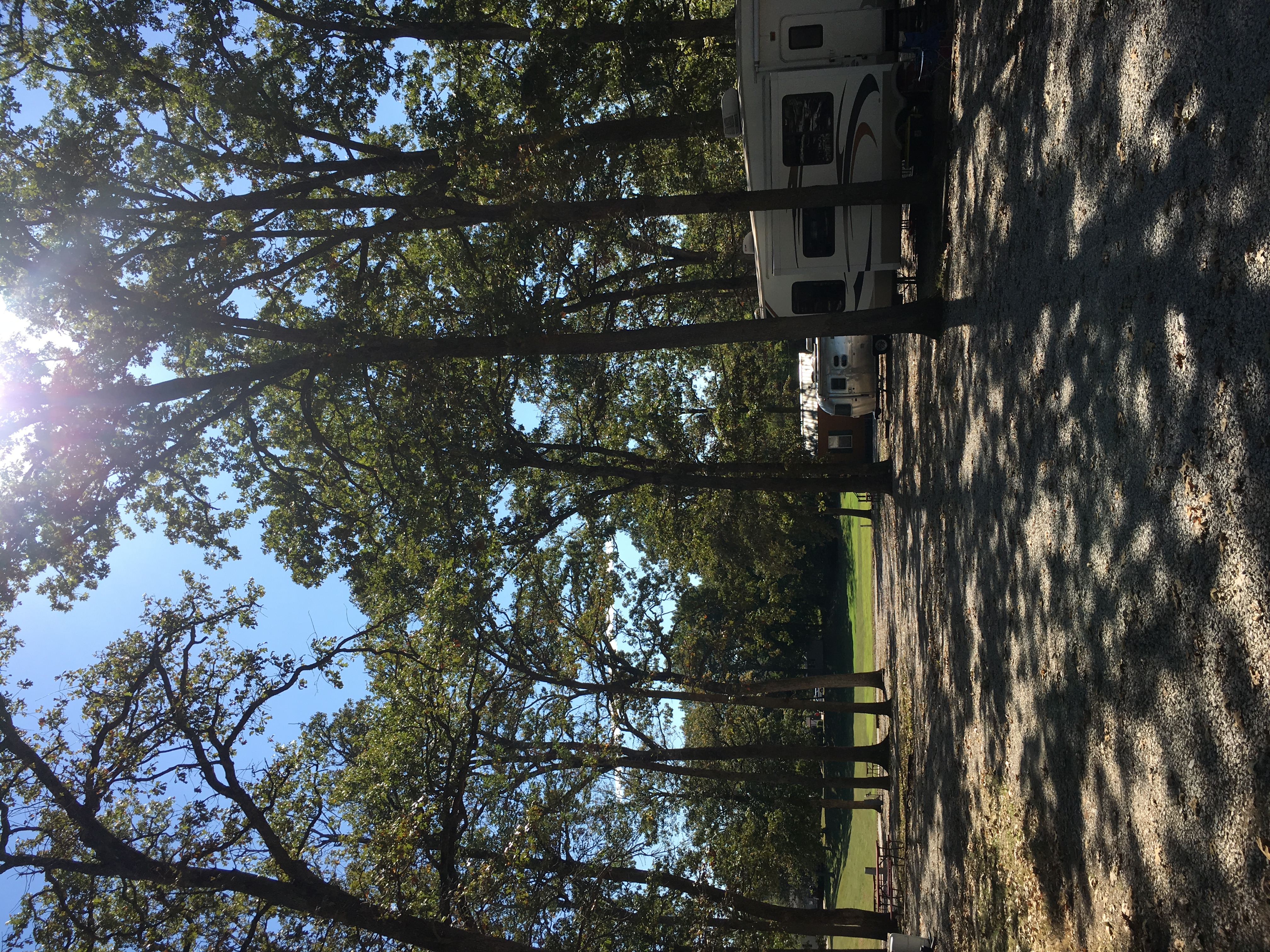 Mature shade trees throughout the campground