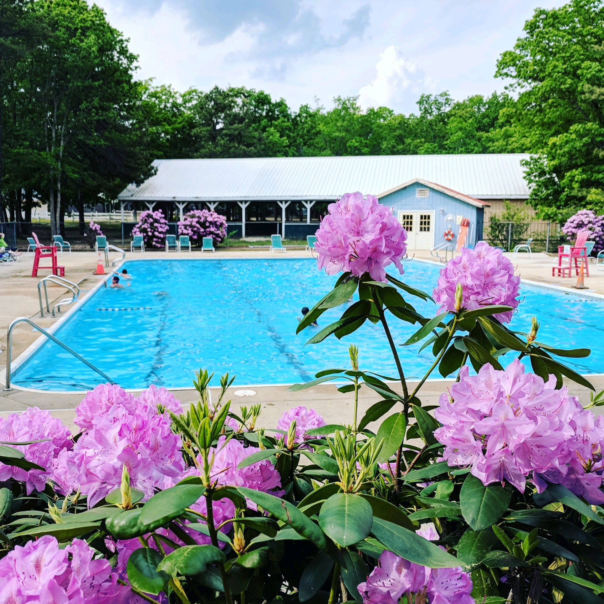 The pool is open Memorial Weekend through Labor Day Weekend 11 am - 6 pm