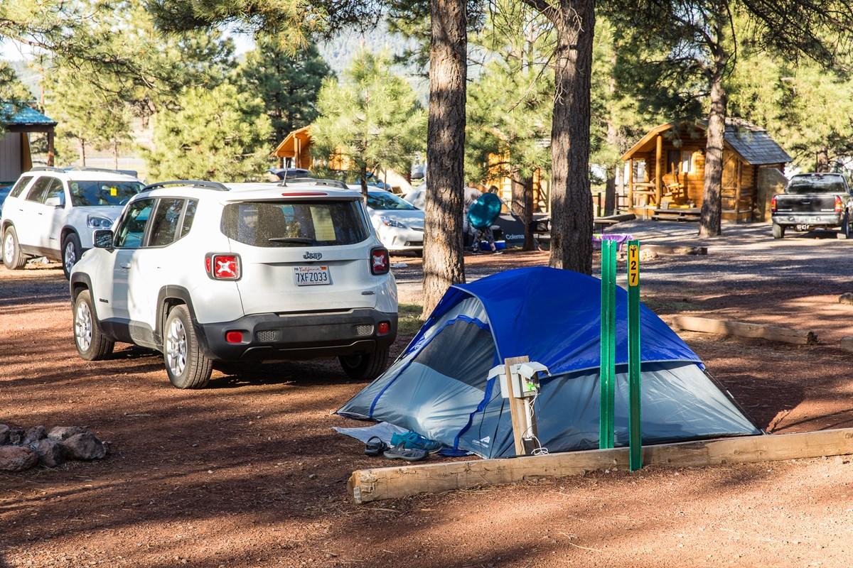 Williams Circle Pines KOA - Tent Site