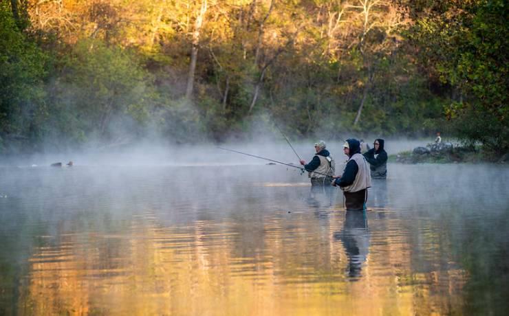 Bennett Springs - Fishing