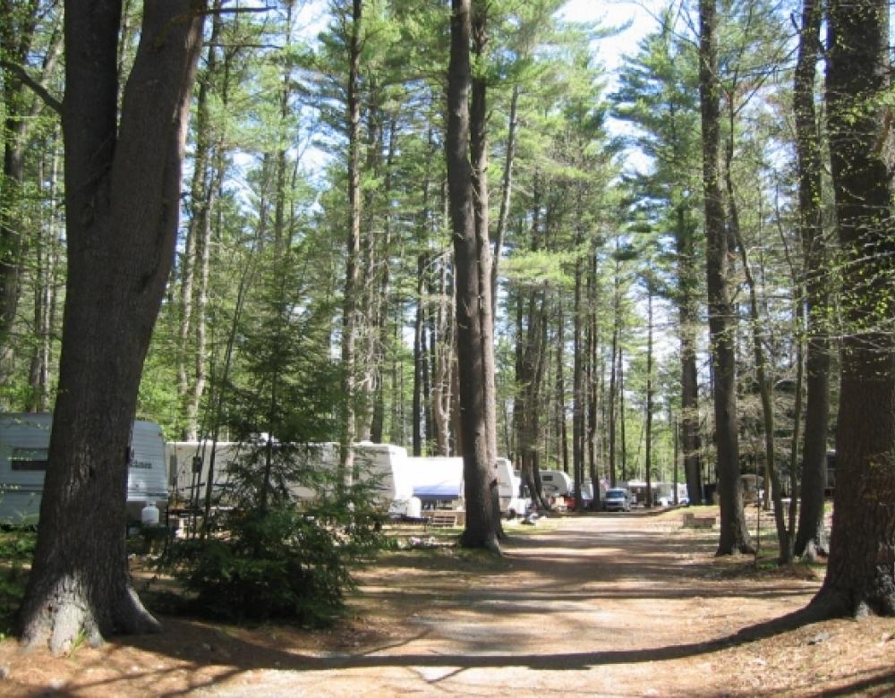 Tuxbury-wooded RV sites