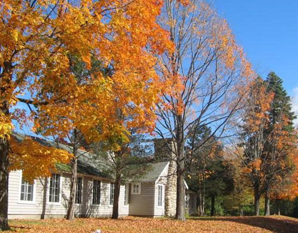 Tuxbury-Fall Foliage