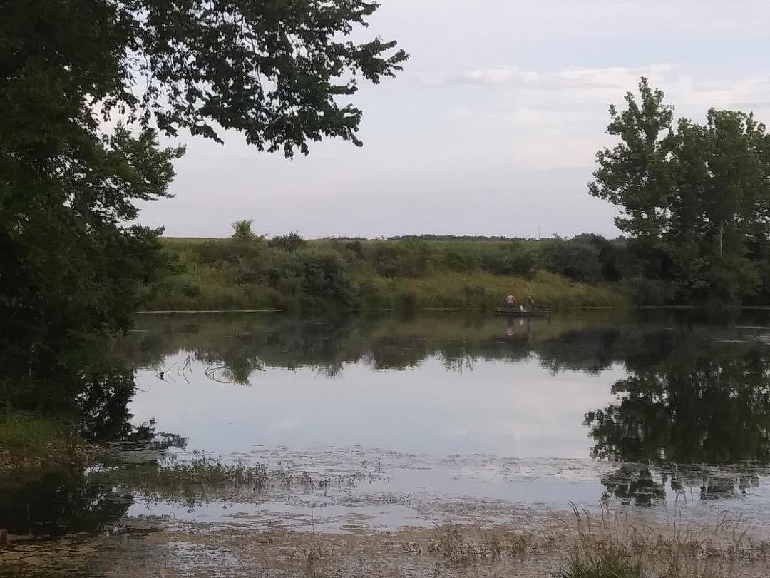 Lake Downing