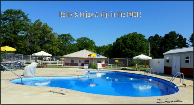 Take a dip in our pool!
