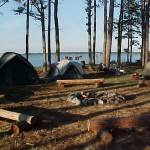 Tall Pines Harbor-Tent camping