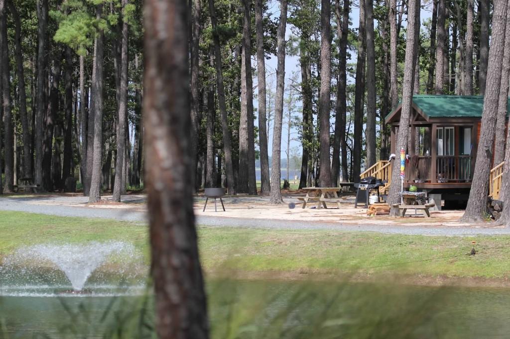 Tall Pines Harbor-playground
