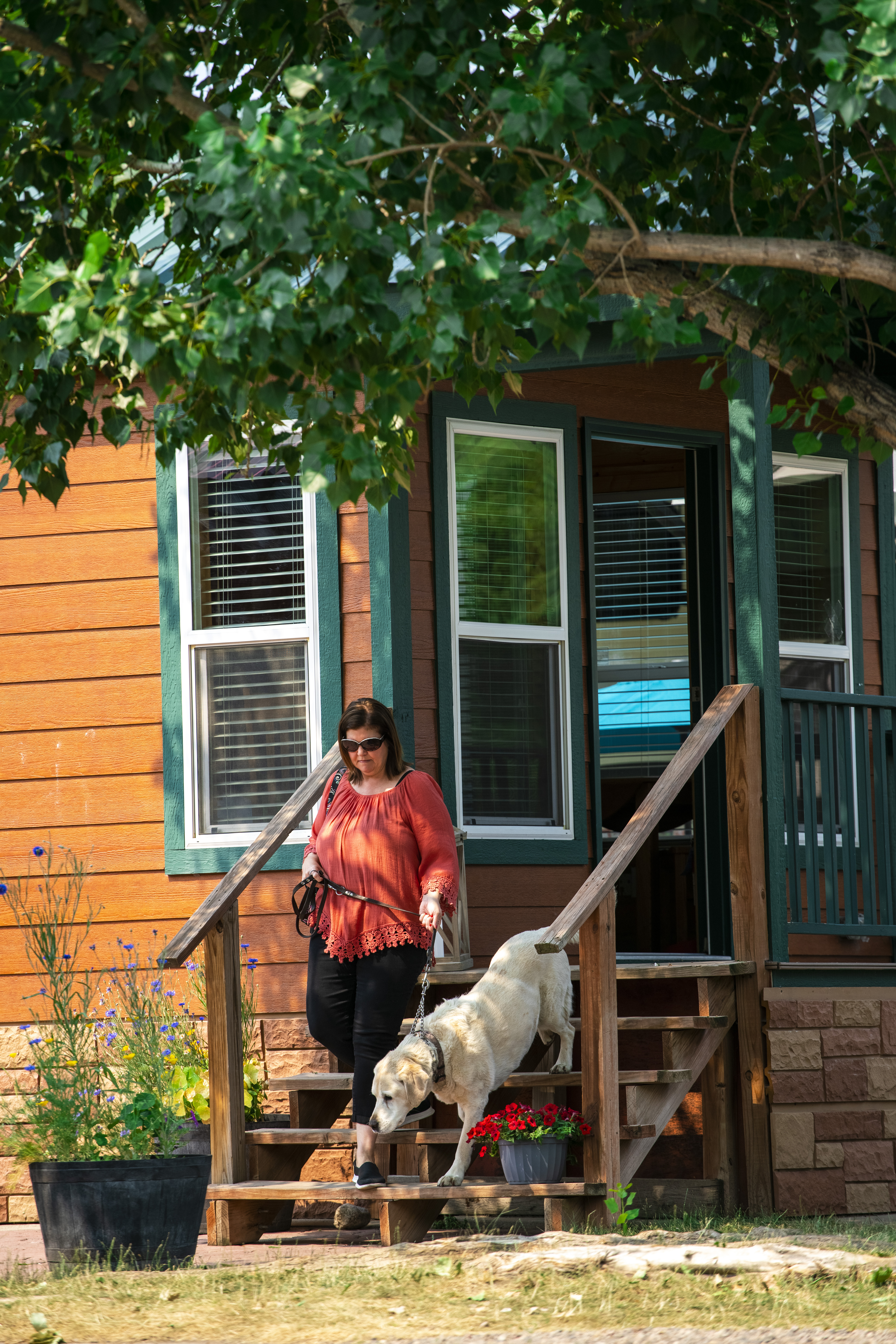 Pet Friendly Deluxe Cabins